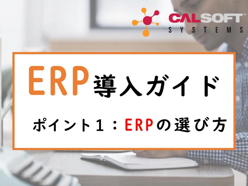 how-to-choose-ERP